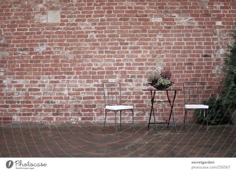schöner wohnen. Natur weiß rot Ferien & Urlaub & Reisen Einsamkeit Erholung Herbst Wand Garten Glück Gebäude Mauer braun Fassade Tisch