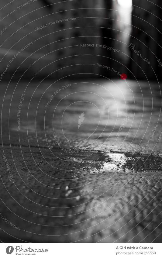red dot schlechtes Wetter Regen Haus Mauer Wand Fassade leuchten glänzend nass rot schwarz weiß Pfütze Bodenbelag Wege & Pfade Schwarzweißfoto Außenaufnahme