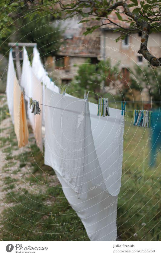 Wäsche klammern Leine Dorf Haus Fenster Idylle Häusliches Leben Provence Wäscheklammern Wäscheleine Bettlaken weiß Baum Wiese Farbfoto Außenaufnahme Tag