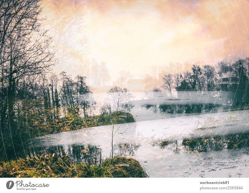 Parkgeschichten Design schön Meer Kunst Natur Landschaft Wolken Nebel Baum Teich See Fluss außergewöhnlich fantastisch Macht Kreativität Rätsel Surrealismus