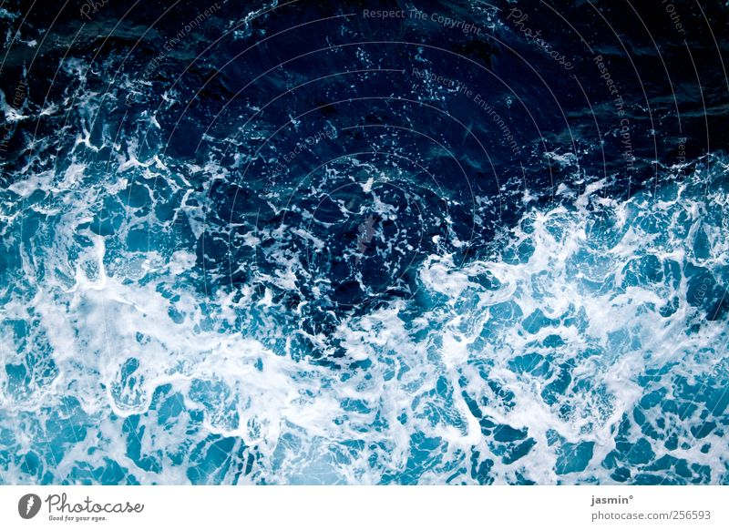 Atlantique Umwelt Wasser Klima Schönes Wetter Wind Meer Leben Farbfoto Außenaufnahme Menschenleer Vogelperspektive