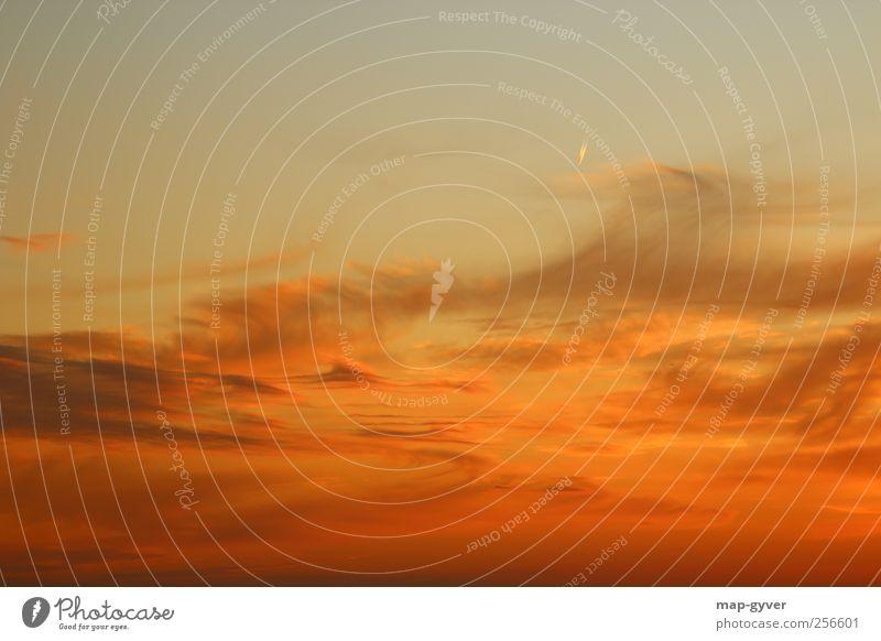 sky & sand Himmel schön Ferien & Urlaub & Reisen Wolken Luft Klima Flugzeug Tourismus Güterverkehr & Logistik Schönes Wetter Mobilität exotisch Sonnenuntergang Passagierflugzeug