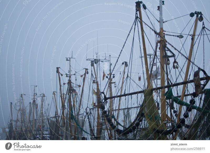 krabbenkutter im nebel blau Ferien & Urlaub & Reisen Winter ruhig gelb dunkel grau Traurigkeit Stimmung Eis Zufriedenheit Nebel warten Frost Netz Idylle