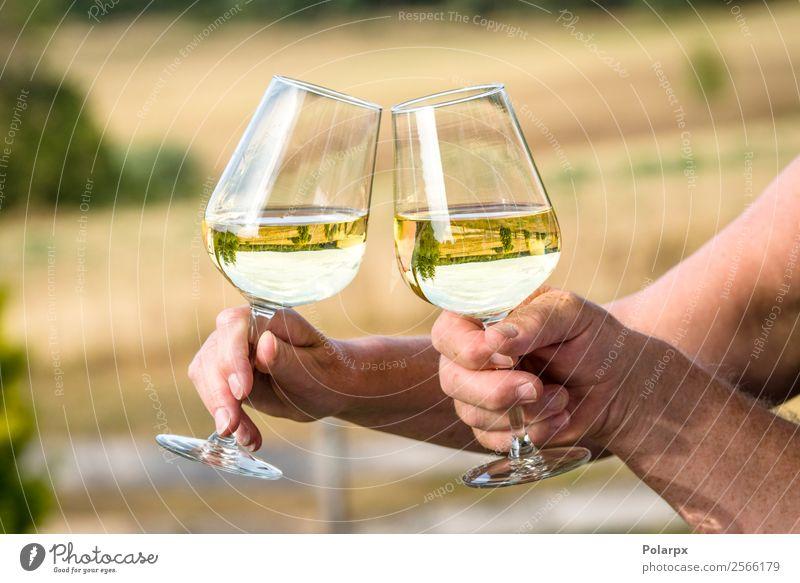 Weingläser mit Spiegelungen schöner Natur Mittagessen Abendessen Getränk trinken Alkohol Lifestyle Reichtum Freude Glück Freizeit & Hobby Sommer Sonne Garten