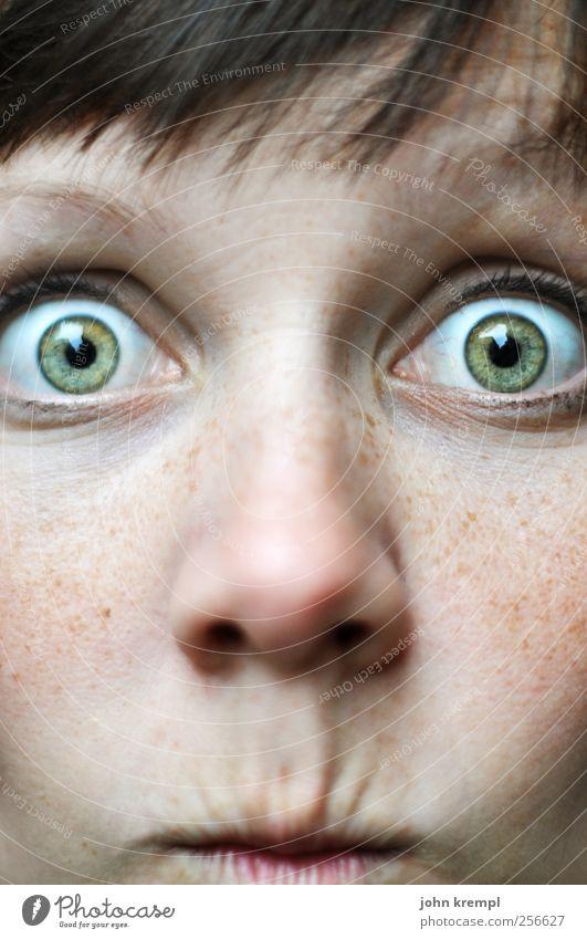 Guckst du! Junge Frau Jugendliche Gesicht Auge 1 Mensch 18-30 Jahre Erwachsene beobachten Blick Fröhlichkeit kuschlig Neugier trashig verrückt grün Überraschung