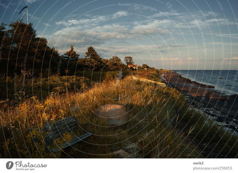 Sitzecke Umwelt Natur Landschaft Pflanze Himmel Wolken Horizont Klima Wetter Schönes Wetter Wärme Baum Gras Sträucher Blatt Wildpflanze Strand Meer Ostsee