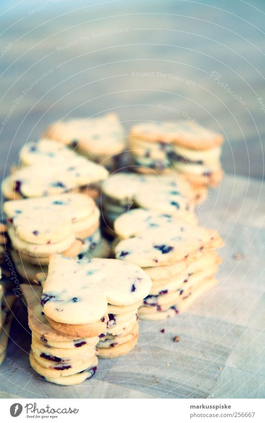 weihnachts plätzchen cookies mit cranberry Lebensmittel Getreide Teigwaren Backwaren Dessert Süßwaren Ernährung Festessen Bioprodukte Vegetarische Ernährung
