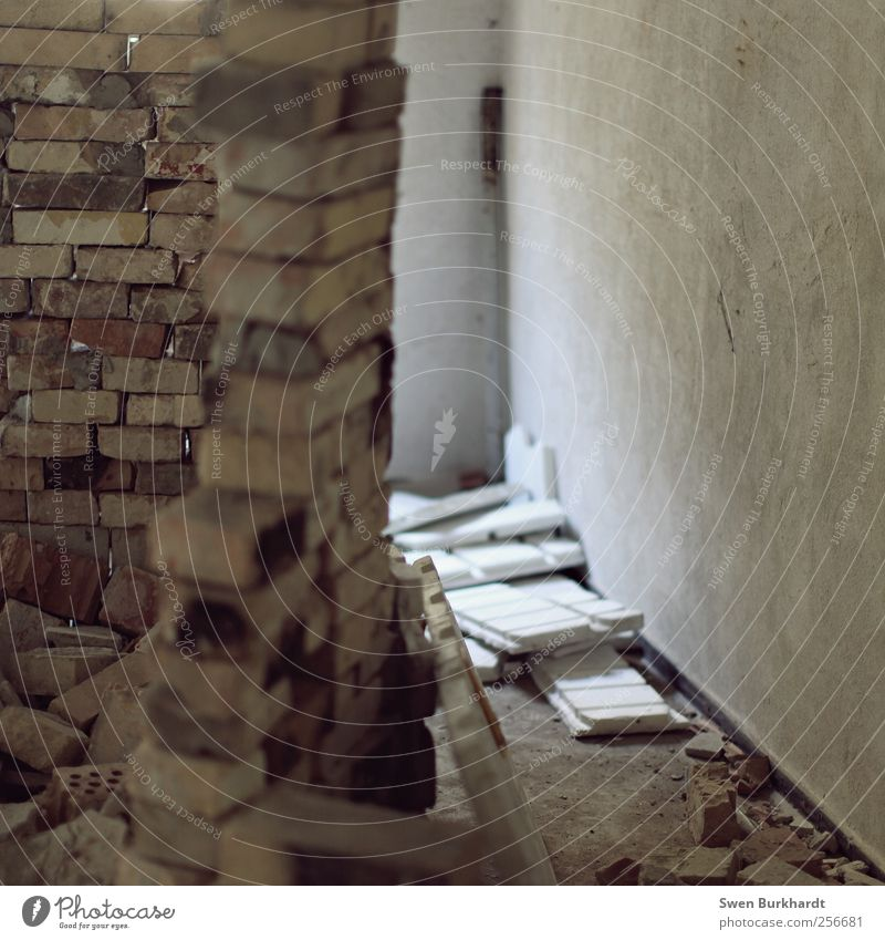 Schatz..?! leg die Bausteine weg und komm essen..... Häusliches Leben Wohnung Haus Hausbau Renovieren Innenarchitektur Mauer Wand Fassade Stein Beton Backstein