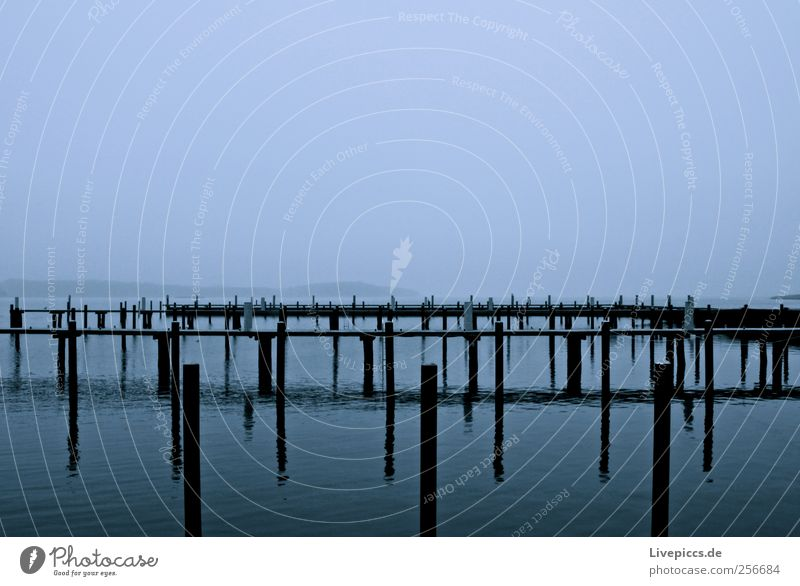 Naturhafen auf Rügen Wasser Strand Herbst Landschaft Holz grau Nebel Hafen Jachthafen Nebelstimmung