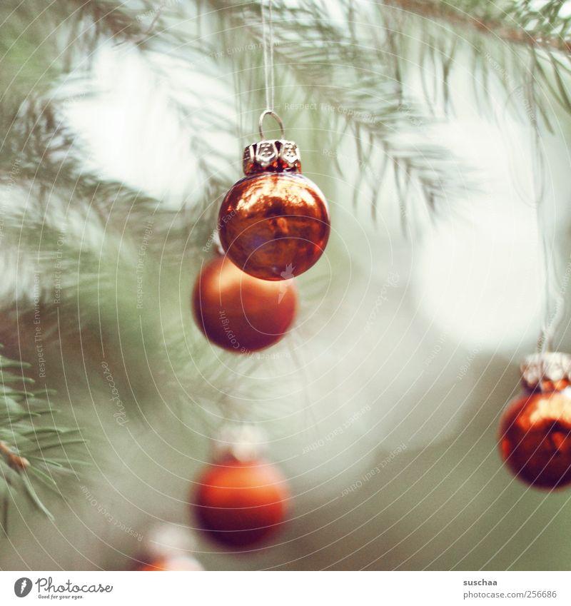 die welt ... Feste & Feiern Weihnachten & Advent Kugel rot Christbaumkugel Weihnachtsdekoration Baumschmuck Tannenbaum Tannenzweig Tannennadeln aufhängen