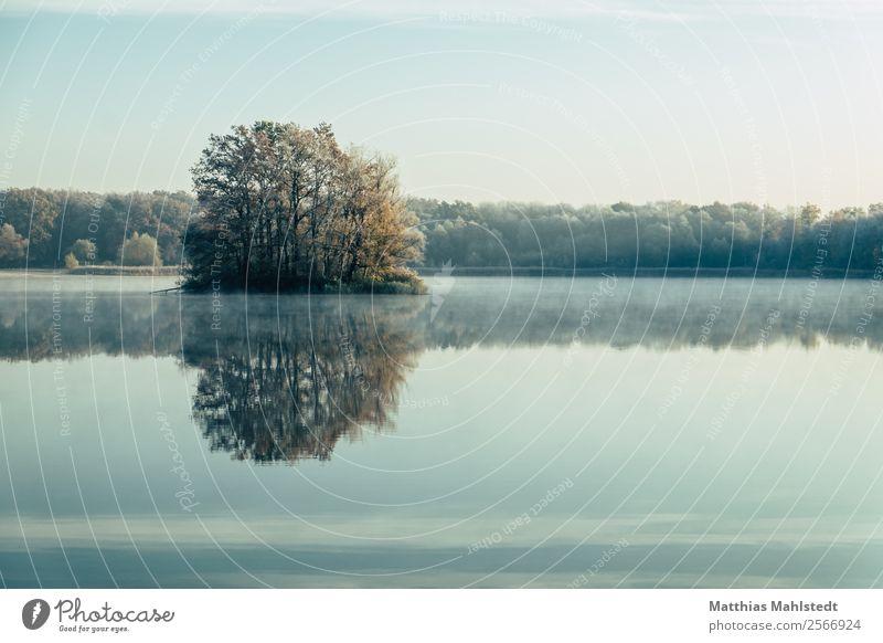Frühnebel am See Umwelt Natur Landschaft Wasser Himmel Herbst Schönes Wetter Nebel Baum Seeufer Nymphensee brieselang blau Zufriedenheit Lebensfreude ruhig