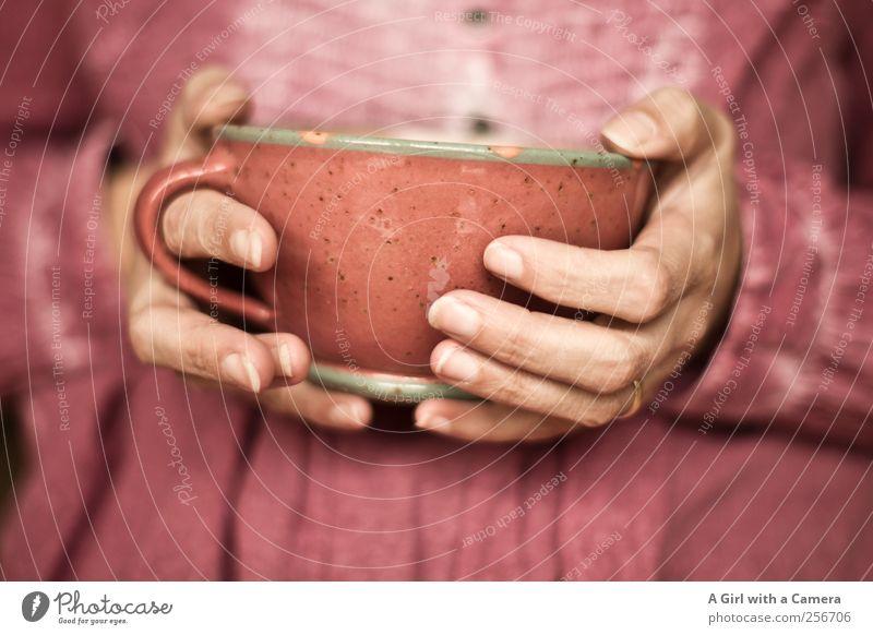 warming up Lifestyle Reichtum Häusliches Leben Mensch feminin Frau Erwachsene Hand Finger 1 Tasse Topf Fröhlichkeit einzigartig Wärme rosa festhalten Ton