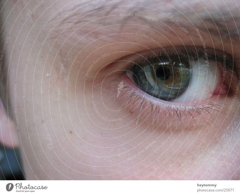 Einen Augenblick, bitte! Mensch Mann weiß grün blau Gesicht Auge Traurigkeit Hoffnung Trauer Teile u. Stücke stark Sinnesorgane Hälfte Wimpern Augenbraue