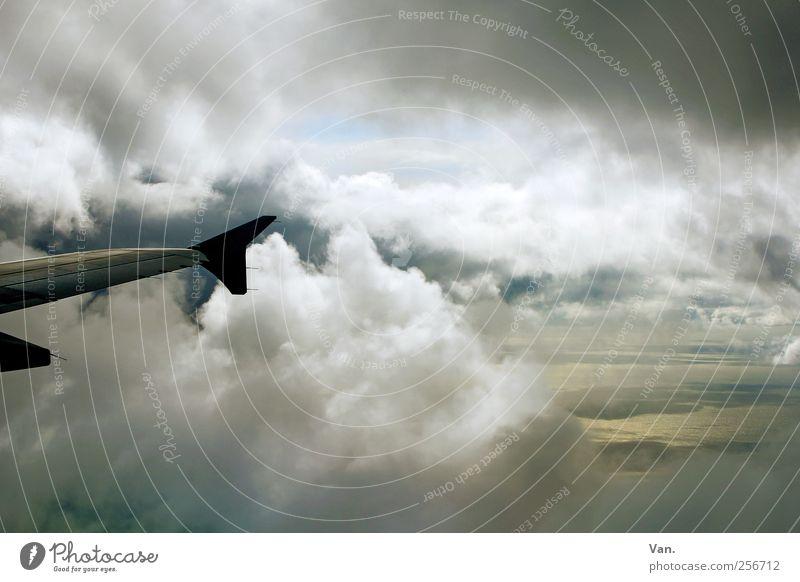 Land in Sicht Ferien & Urlaub & Reisen Ferne Meer Insel Landschaft Himmel Wolken Wind Küste Verkehrsmittel Personenverkehr Luftverkehr Flugzeug
