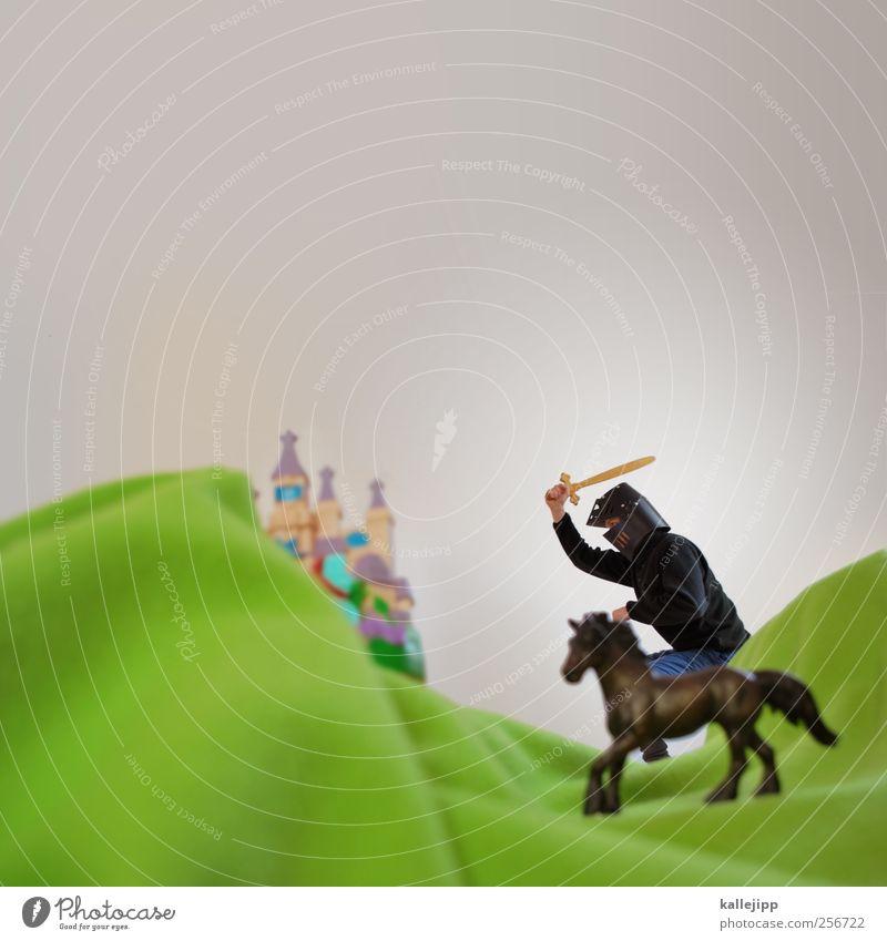 ivanhoe Mensch Natur Mann Tier Erwachsene Landschaft Umwelt Berge u. Gebirge maskulin Erfolg Lifestyle Pferd Hügel Burg oder Schloss Mut Held