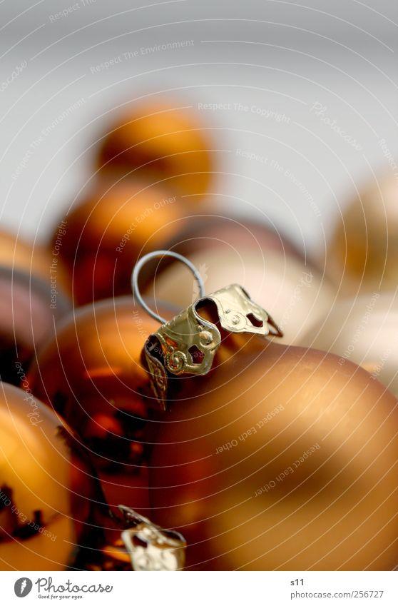 es kugelt! Weihnachten & Advent schön Gefühle Metall Stimmung braun Feste & Feiern gold Glas glänzend Gold liegen modern ästhetisch leuchten