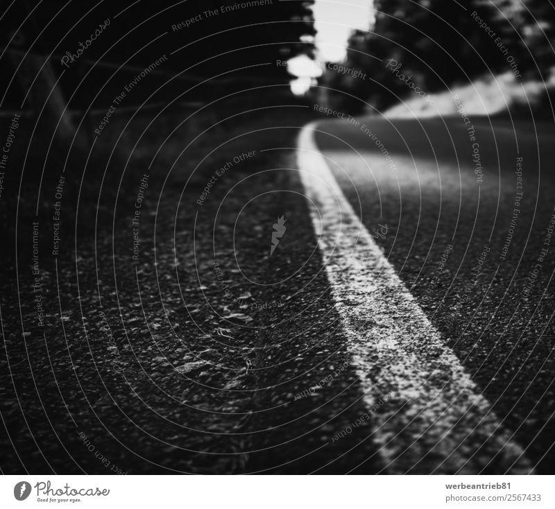 der Weg Natur Landschaft Wald Verkehr Straße Wege & Pfade Autobahn Beton Denken Zukunft unklar verschwommen Asphalt Weg nach vorne weitergeben Tor melancholisch