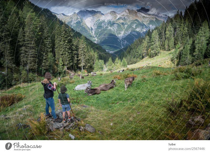 Hirten Abenteuer Ferne Freiheit Sommer Berge u. Gebirge wandern Landwirtschaft Forstwirtschaft Umwelt Natur Landschaft Wolken Klima Klimawandel Wetter Hügel