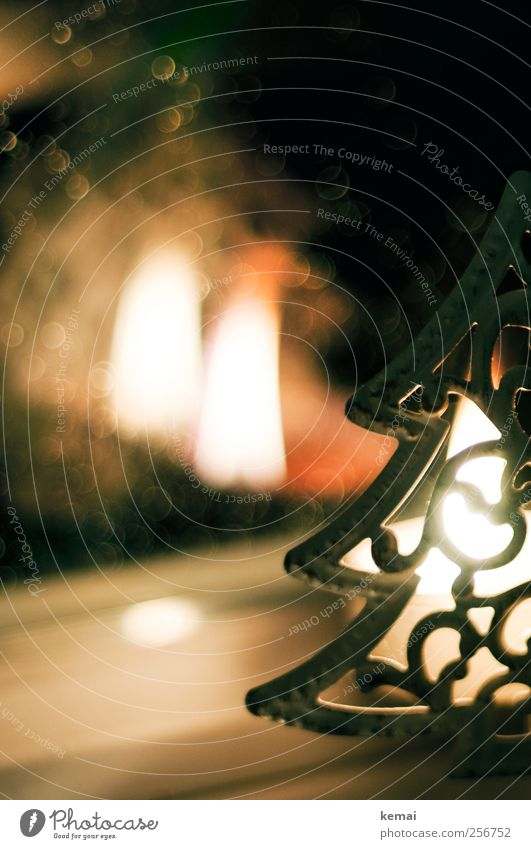 Tannenbaumlicht Weihnachten & Advent Fenster Gefühle Wärme Stimmung hell Regen Feste & Feiern leuchten Kerze Warmherzigkeit Weihnachtsbaum brennen gemütlich