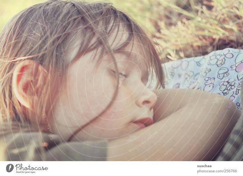 schlafen Mensch Kind Mädchen Sommer Gesicht Erholung Gras Kopf Haare & Frisuren Kindheit Arme Haut Mund Nase schlafen Ohr