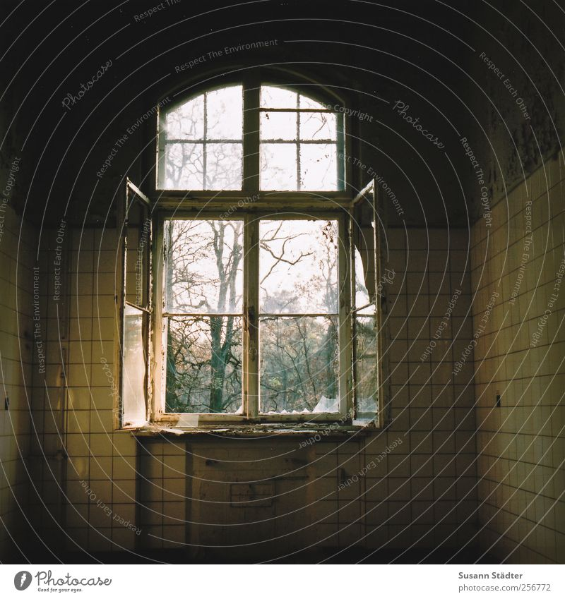 time and space. Bauwerk verkaufen Häusliches Leben Beginn Endzeitstimmung entdecken Ewigkeit Überleben Verfall Vergangenheit Fenster offen verfallen Vandalismus
