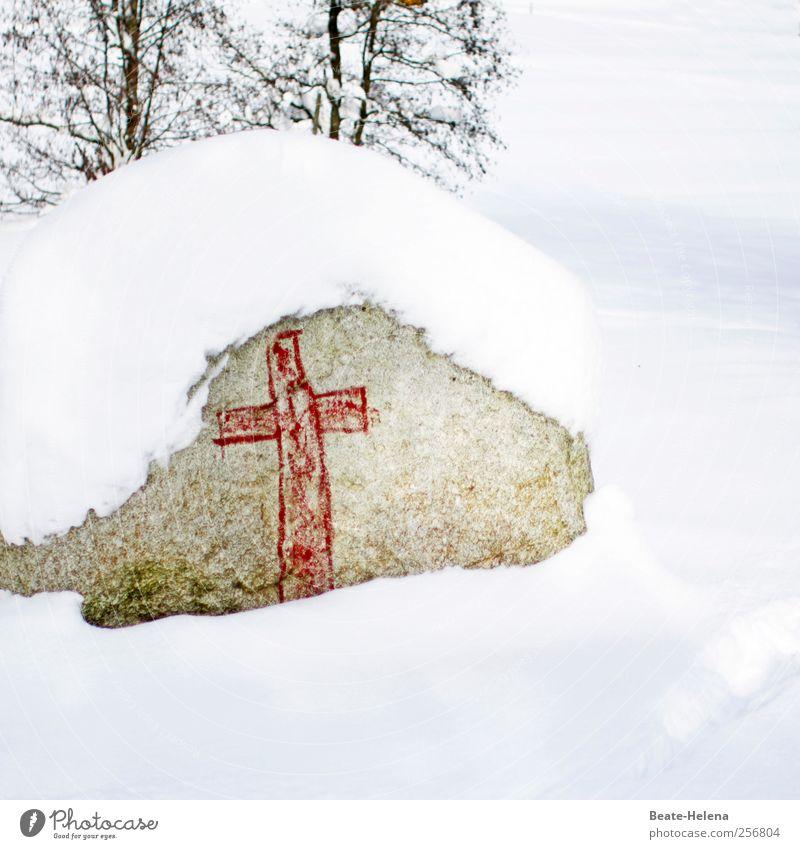 Der Herbst ist tot - es lebe der Winter! Natur weiß rot Winter ruhig Tod kalt Schnee Landschaft Graffiti grau Stein Park Eis wandern schlafen
