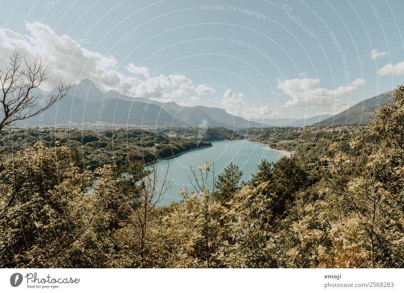 Irgendwo bei der Route Napoleon Natur Sommer blau Landschaft Wald Herbst natürlich See Schönes Wetter