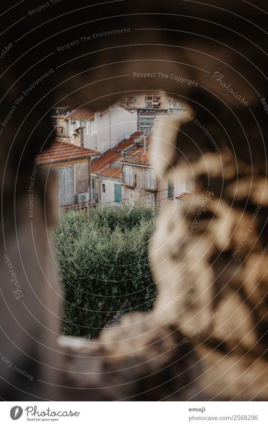 Cannes Park Stadt Menschenleer Haus Mauer Wand Fassade alt Armut Loch Farbfoto Außenaufnahme Detailaufnahme Tag Schwache Tiefenschärfe