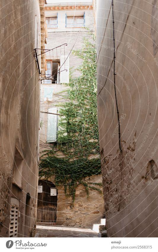 Côte d'Azur Efeu Kleinstadt Haus Mauer Wand Fassade Gasse alt Armut Cote d'Azur Farbfoto Außenaufnahme Menschenleer Tag Licht Schatten Weitwinkel
