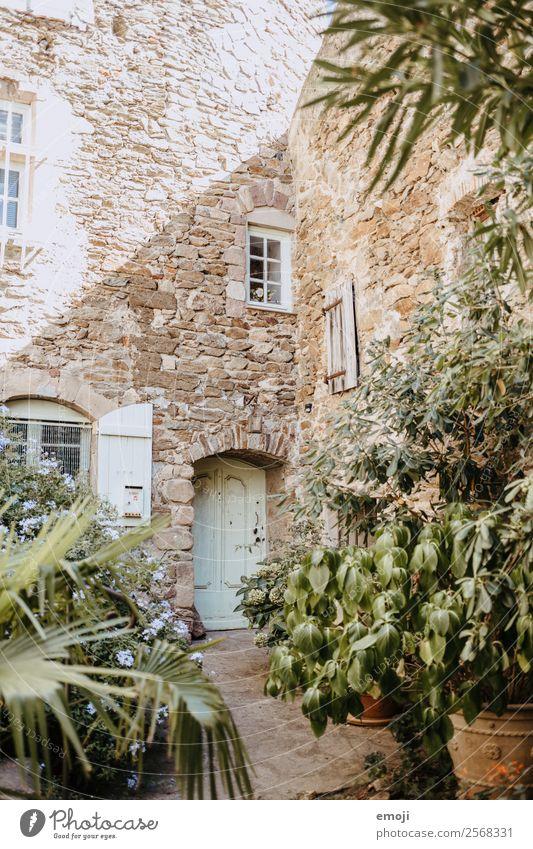 Gassin Sommer Schönes Wetter Pflanze Sträucher Dorf Kleinstadt Haus Traumhaus Mauer Wand Fassade authentisch Wärme mediterran gassin Frankreich
