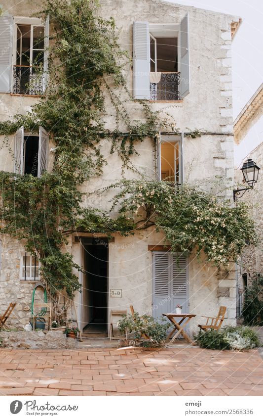 Antibes Haus Fenster Wand Mauer Fassade Tür authentisch Dorf mediterran Gasse Sitzgelegenheit Efeu Einfamilienhaus Traumhaus Cote d'Azur