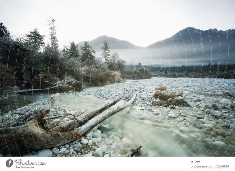 fließendes Gewässer Ausflug Abenteuer Berge u. Gebirge wandern Umwelt Natur Landschaft Wasser Herbst Nebel Wald Hügel Felsen Alpen Bach Fluss Isar verblüht