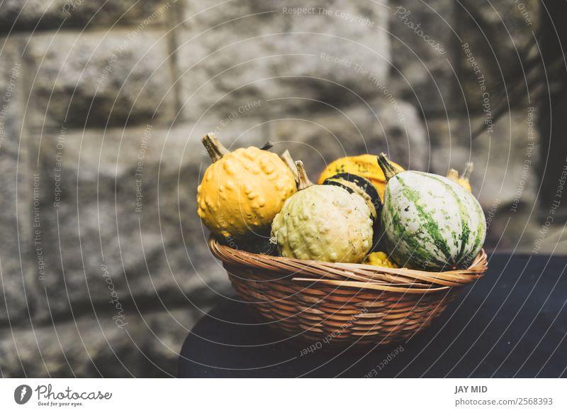 Kürbisse in vielen Variationen, im Weidenkorb Gemüse Dekoration & Verzierung Erntedankfest Halloween Weihnachten & Advent Natur Herbst außergewöhnlich gelb grün