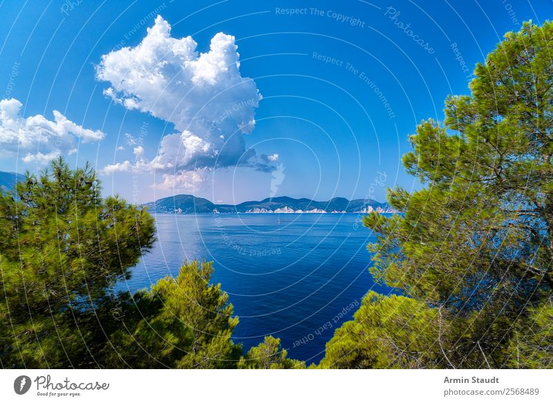Auf der Insel Lifestyle Design Freude Glück Leben harmonisch Wohlgefühl Zufriedenheit Sinnesorgane Erholung ruhig Meditation Ferien & Urlaub & Reisen Abenteuer