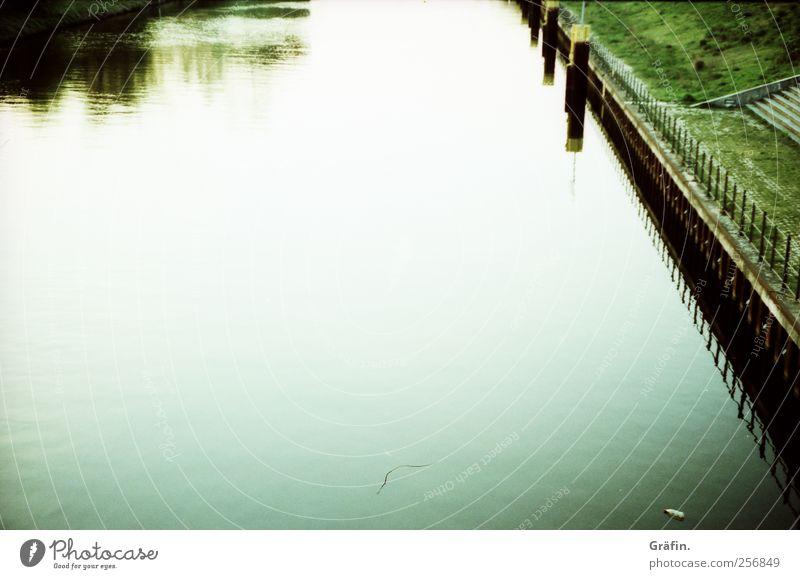 Am Kanal Wasser Herbst Wiese Flussufer Menschenleer grün weiß Romantik ruhig Einsamkeit Reflexion & Spiegelung Farbfoto Außenaufnahme Textfreiraum oben