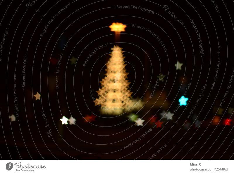 Weihnachtssterne Weihnachten & Advent Baum glänzend leuchten gold Unschärfe Sternenhimmel Weihnachtsbaum Weihnachtsbaumspitze Licht Weihnachtsbeleuchtung