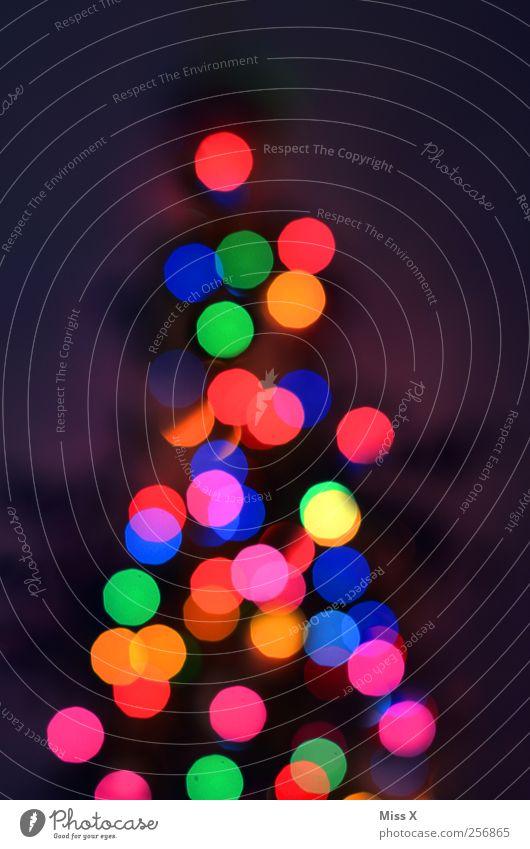 bunte Punkte Weihnachten & Advent Baum leuchten mehrfarbig Weihnachtsbaum Weihnachtsbeleuchtung Licht Glühbirne Weihnachtsdekoration Farbfoto Außenaufnahme