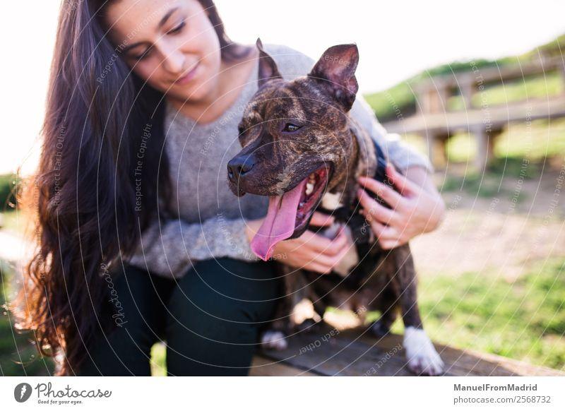 junge Frau mit ihrem Hund Lifestyle Glück schön Erwachsene Freundschaft Natur Tier Gras Park Haustier Lächeln niedlich grün Freude Fröhlichkeit Vertrauen