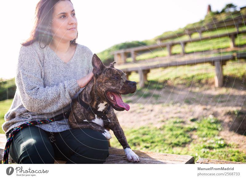 junge Frau sitzt mit ihrem Hund im Sitzen Lifestyle Glück schön Erwachsene Freundschaft Natur Tier Gras Park Haustier Lächeln niedlich grün Vertrauen Sicherheit