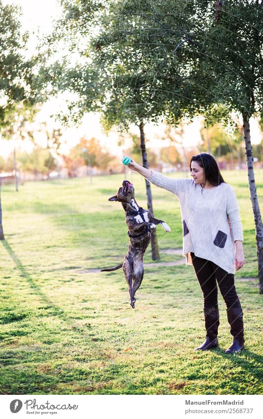 Frau Natur Hund schön grün Hand Tier Freude Lifestyle Erwachsene Glück Gras Spielen Freundschaft springen Park