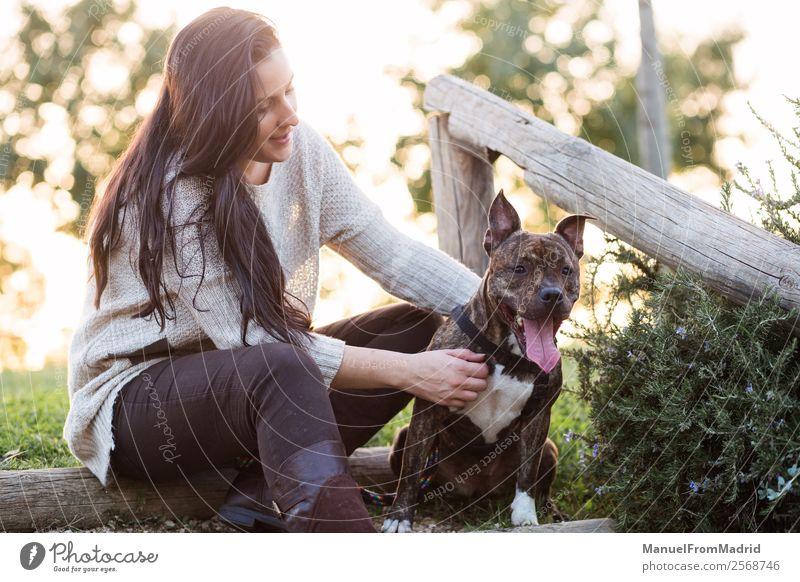 Frau Natur Hund schön grün Tier Lifestyle Erwachsene Glück Gras Zusammensein Freundschaft Park Lächeln Fröhlichkeit authentisch