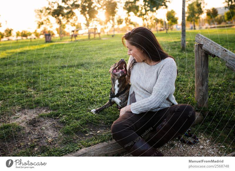 Frau Natur Hund schön grün Tier Freude Lifestyle Erwachsene Glück Gras Zusammensein Freundschaft Park Lächeln Fröhlichkeit