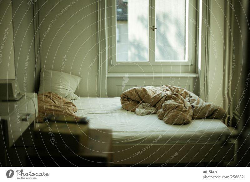Schlafzimmerblick alt Fenster Raum Freizeit & Hobby Design Bett Möbel Decke Bettdecke Altbauwohnung