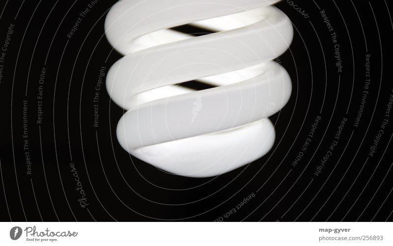 glow Energiesparbirne Glühbirne Energiesparlampe Design elegant kalt Klima rein Symmetrie Umwelt Umweltschutz Zukunft Licht Schwarzweißfoto Gedeckte Farben