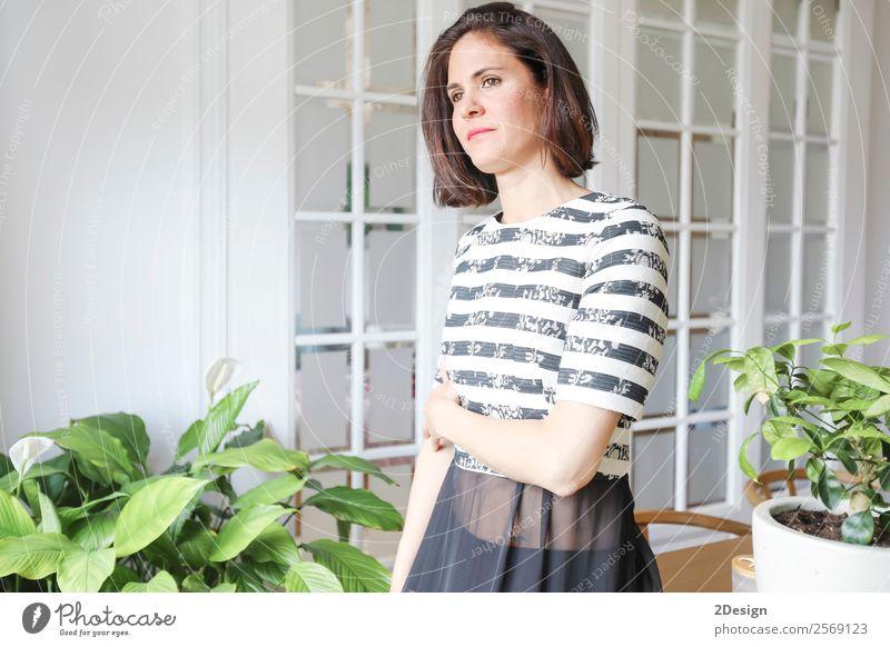 junge schöne Dame, die im Wohnzimmer posiert. Reichtum elegant Stil Glück Körper Erholung Möbel Mensch feminin Junge Frau Jugendliche Erwachsene 1 18-30 Jahre
