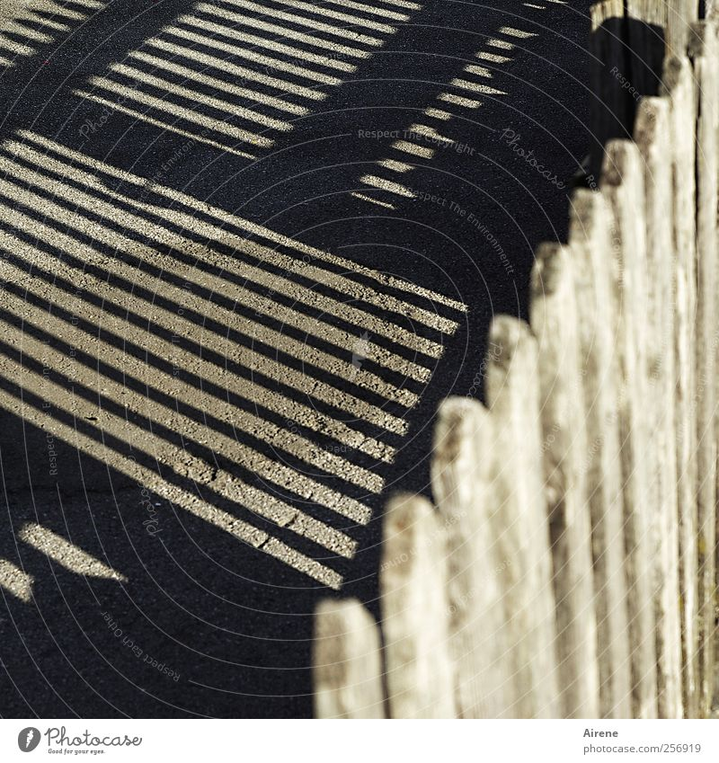 hinterm Zaun Garten Dorf Menschenleer Holzzaun Zaunpfahl Straße Straßenbelag Linie Streifen braun schwarz Ordnung Klarheit Genauigkeit gestreift Schlagschatten