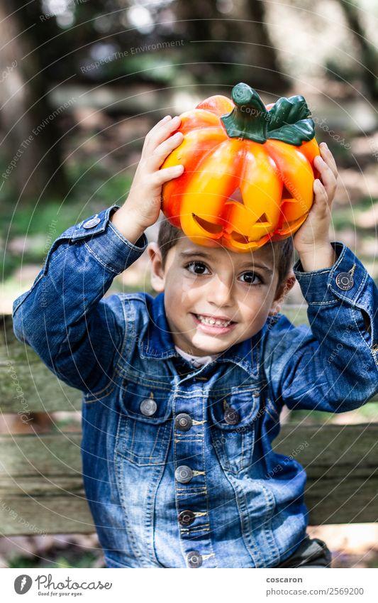 Kleiner Junge sitzt auf einer Bank mit einem Kürbis an Halloween. Lifestyle Freude Glück schön Freizeit & Hobby Feste & Feiern Kind Mensch maskulin Kleinkind