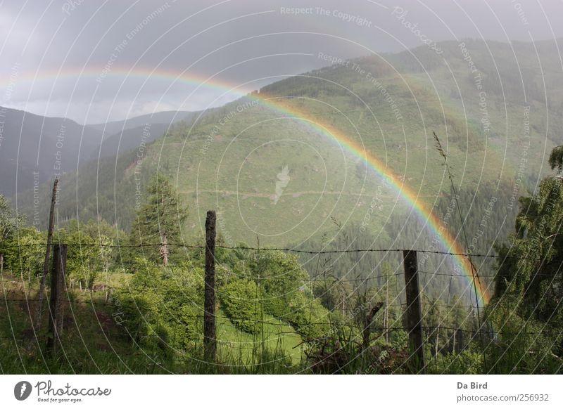 Regenbogen im Lungau Natur Wald Erholung Umwelt Landschaft Freiheit Berge u. Gebirge Frühling Wetter Hoffnung Frieden