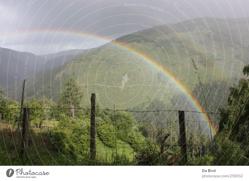 Regenbogen im Lungau Umwelt Natur Landschaft Frühling Wetter Wald Berge u. Gebirge Erholung Freiheit Frieden Hoffnung Außenaufnahme Menschenleer Tag Sonnenlicht