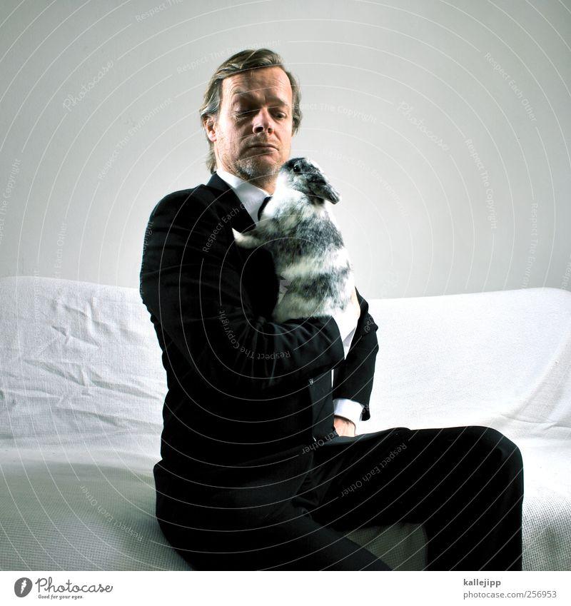 festtagsbraten Mensch Tier Kopf Mode elegant sitzen maskulin Fell Ostern Anzug Hase & Kaninchen Haustier Stolz Zauberei u. Magie skeptisch Hochmut